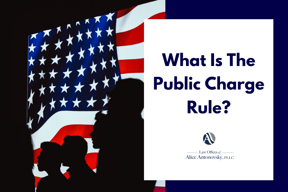 New Public Charge Rule: February 2020 Changes